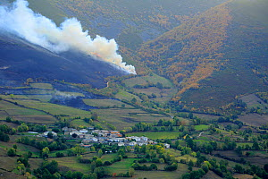 Fire in the Cantabrian mountains, Degana e Ibias Natural Park, Asturias, Spain, October - Andres M. Dominguez