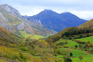 Autumn in Somiedo National Reserve, Cantabrian Mountains, Asturias, Spain. October - Andres M. Dominguez