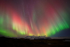 Northern lights in winter, Iceland, October 2013. - David Allemand