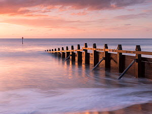 RF - Groyne/sea defense at Dawlish Warren at dawn, South Devon, UK. January 2018. (This image may be licensed either as rights managed or royalty free.)  -  Ross Hoddinott