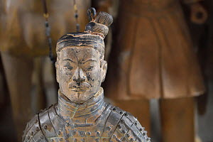 Statue of a soldier in the 'Terracotta Army' in Xian, Shaanxi, China, April 2018.  -  Staffan Widstrand / Wild Wonders of China