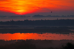 Misty sunrise over Tiszaalpar Marsh, Kiskunsag National Park, Hungary, June 2017 - Mike Read
