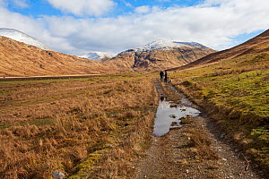 Walkers and dog on a footpath in Glen Cammel near Loch Ba with the mountains of Beinn Bheag Beinn Talaidh and Beinn Chaisgidle beyond Isle of Mull, Inner Hebrides, Scotland, UK. March 2017 - Mike Read