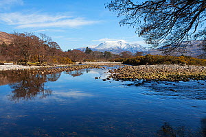 View across the River Scaddle Inverscalle with Ben Nevis beyond Loch Linnhe, Argyll and Bute, Highland, Scotland, March 2017 - Mike Read