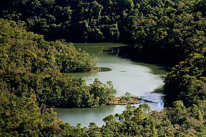 Lake in Intervales State Park, Sao Paulo, Atlantic Forest South-East Reserves, UNESCO World Heritage Site, Brazil.  -  Joao Burini