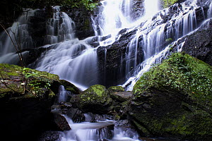 Fendao waterfall, Intervales State Park, Sao Paulo, Atlantic Forest South-East Reserves, UNESCO World Heritage Site, Brazil. June, 2010.  -  Joao Burini