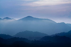 Misty landscape with mountains in distance, from a high lookout in  Intervales State Park, Sao Paulo, Atlantic Forest South-East Reserves, UNESCO World Heritage Site, Brazil.  -  Joao Burini
