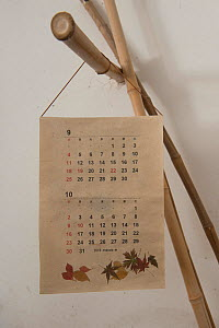 Calendar made from Japanese washi paper produced in the Camarge, Arles, France. February 2018.  -  Jean E. Roche
