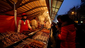 Street food vendor selling kebabs, Donghuamen Night Market, Wangfujing, Dongcheng District, Beijing, China, February 2015. (This image may be licensed either as rights managed or royalty free.)  -  Gavin Hellier