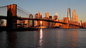 View of One World Trade Center and Lower Manhattan at sunset from across the Hudson River, with Brooklyn Bridge in the foreground, New York, Manhattan, United States of AmericaJune 2016. (This image m... - Gavin Hellier