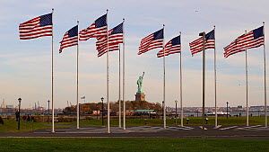 Group of American flags flying in Liberty State Park, with the Statue of Liberty in the background, New York, USA, June 2016. (This image may be licensed either as rights managed or royalty free.) - Gavin Hellier