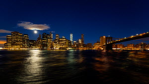 Timelapse of the moon setting over Manhattan, New York, USA, June 2016. (This image may be licensed either as rights managed or royalty free.) - Gavin Hellier