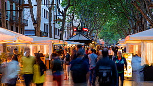 Timelapse of people walking along Las Ramblas, Barcelona, Catalonia, Spain, May 2016. (This image may be licensed either as rights managed or royalty free.) - Gavin Hellier