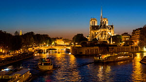 Timelapse of boats on the River Seine at night, next to Notre Dame, Paris, France, May 2016. (This image may be licensed either as rights managed or royalty free.) - Gavin Hellier