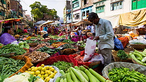 Timelapse of a street market, Udaipur, Rajasthan, India, January 2018. (This image may be licensed either as rights managed or royalty free.) - Gavin Hellier