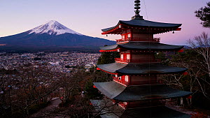 Timelapse of the sun rising behind Mount Fuji, with the Chureito Pagoda in the foreground, Arakurayama Sengen Park, Fujiyoshida, Japan, November 2017. (This image may be licensed either as rights mana... - Gavin Hellier