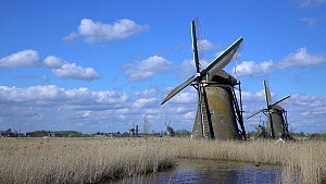 Windmills turning, Kinderdijk UNESCO World Heritage Site, Netherlands, April 2017. (This image may be licensed either as rights managed or royalty free.)  -  Gavin Hellier