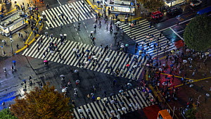 Timelapse of crowds of people crossing the centre of Shibuya shopping and entertainment district at night, Tokyo, Japan, November 2017. (This image may be licensed either as rights managed or royalty... - Gavin Hellier