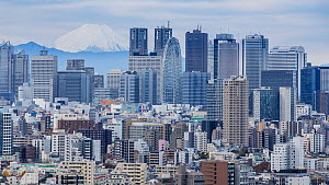 Timelapse of clouds moving over Tokyo, with Mount Fuji in the background, Japan, November 2017. (This image may be licensed either as rights managed or royalty free.)  -  Gavin Hellier