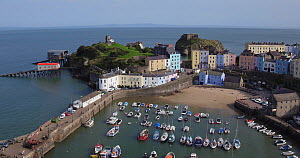 Aerial shot tracking over Tenby, Pemrokeshire, Walkes, UK, September 2017. (This image may be licensed either as rights managed or royalty free.)  -  Gavin Hellier