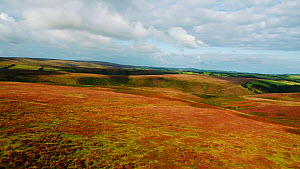 Aerial shot panning over Exmoor National Park, Devon, England, UK, October 2017. (This image may be licensed either as rights managed or royalty free.) - Gavin Hellier