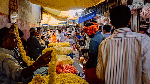 Timelapse of the Krishna Rajendra flower market, Bangalore, Karnataka, India, January 2018. (This image may be licensed either as rights managed or royalty free.)  -  Gavin Hellier