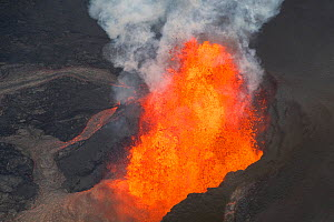 Lava originating from Kilauea Volcano, erupting from fissure 8, near Pahoa, fountaining over 70m high into the air and sending a river of lava toward, Kapoho, Puna District, Hawaii. June 2018. - Doug Perrine