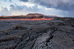 Lava erupting from fissure 8 of the Kilauea Volcano, near Pahoa, flowing through what was formerly a papaya orchard in Kapoho, lower Puna District, Hawaii. June 2018. - Doug Perrine