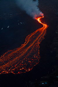 River of lava, erupting from fissure 8 of Kilauea Volcano, flowing towards Kapoho, Puna District, Hawaii. June 2018. - Doug Perrine