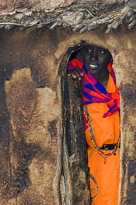 Maasai woman peering out of hut, Maasai village, Kenya. September 2006.  -  Jeff Foott