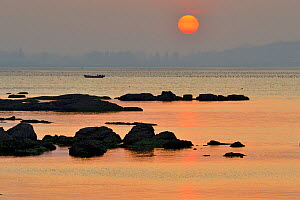 Rocks along Yellow Sea coast at sunset. Yangma Island, Yantai, Shandong Province, China. September 2017. - Magnus Lundgren / Wild Wonders of China