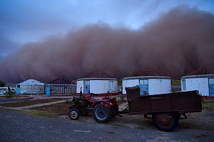 Sand storm rolling in towards lodges on farm, Inner Mongolia, China  -  Staffan Widstrand / Wild Wonders of China
