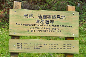 Please keep quiet! Black bear and Panda habitat. Tangjiahe National Nature Reserve, Qingchuan County, Sichuan province, China - Staffan Widstrand / Wild Wonders of China