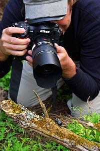 Photographer Magnus Lundgren photographing a Rhinoceros beetle (Oryctes sp.) Tangjiahe National Nature Reserve, Qingchuan County, Sichuan province, China  -  Staffan Widstrand / Wild Wonders of China