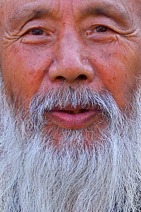 Portrait of Tao Grand Master Rinfarong, close up portrait, Louguantai temple, Xian, Shaanxi, China. This temple is where Lao Tze wrote the Tao Te Ching. - Staffan Widstrand / Wild Wonders of China