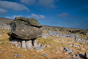A Glacial Erratic at Norber near Austwick, Yorkshire, UK. This is one of the Norber erratics, where blocks of older Silurian sandstone were left on top of younger Carboniferous limestone by a retreati...  -  Graham Eaton