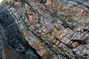 A small relay thrust fault in steeply dipping Carboniferous age Sandstones and shales (Culm Measures) near Bude, Cornwall, March.  -  Graham Eaton
