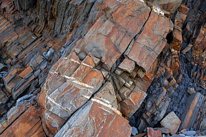 En echelon tension (or parallel) cracks in Carboniferous age turbidite sandstones, Bude, Cornwall, UK, May. The tension cracks have formed in the more competent sandstones as the rocks were folded. Th... - Graham Eaton