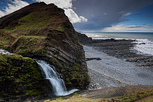 A small waterfall on the coast at the side of St Catherine's Tor, near Hartland Quay, Devon, UK, March  -  Graham Eaton
