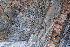 Sole marks on the underside of a bed of Carboniferous age, turbidite sandstone. Bude, Cornwall, UK, may. Sole marks are formed by flowing water or currents and can indicate the flow direction when the... - Graham Eaton