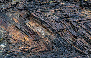 Chevron recumbent folding in Carboniferous age sandstone and shale (Culm Measures), deformed by compression during the Variscan or Hercynian orogeny, a geologic mountain-building event caused by Late...  -  Graham Eaton