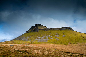 The southern approach to Pen-y-ghent, one of theYorkshire '3 Peaks'. The summit comprises Carboniferous age Millstone Grit, overlying Carboniferous Limestone that forms the outcrop in the imag...  -  Graham Eaton