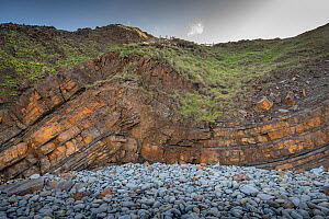 A monocline fold with a minor thrust fault in Carboniferous age sandstones, Bude, Cornwall, UK, May. - Graham Eaton