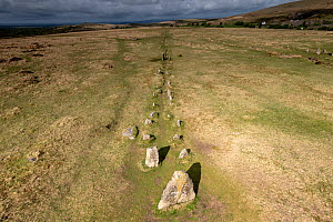 Merrivale stone rows, a line of upright, parallel megalithic standing stones, Devon, England, UK, May.  -  Graham Eaton