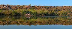 Ranthambhore Fort with resthouse Jogi Mahal below, Ranthambhore National Park, Rajasthan, India  -  Axel  Gomille