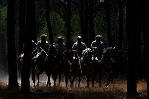 Men on horseback during the annual round up and transfer of the mares and foals from the marsh to the corrals of the town. Donana National Park, Spain. September 2014. - Francisco Marquez