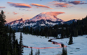 Glaciers on Mount Rainier, with dawn light on lenticular clouds hanging about the summit's crevasses on the East facing slope. Washington, USA. June 2018.  -  Jack Dykinga