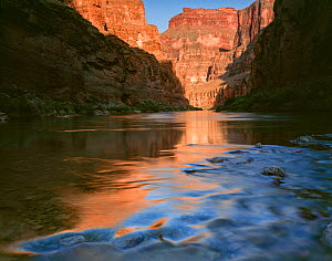 Fern Glen Canyon at sunset, with reflections in the canyon mouth,  Grand Canyon National Park, Arizona, USA.  -  Jack Dykinga