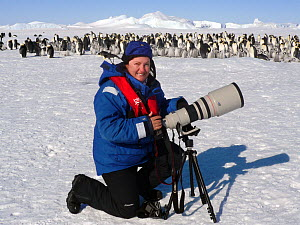 Portrait of wildlife photographer Sue Flood photographing Emperor penguins (Aptenodytes forsteri) with Canon camera at Snow Hill Island rookery, Weddell Sea, Antarctica. October 2008.  -  Sue Flood