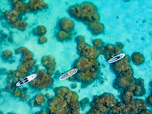 Three people on stand-up paddle boards over reef. Piti Bay, Guam, Mariana Islands, Micronesia. - David Fleetham